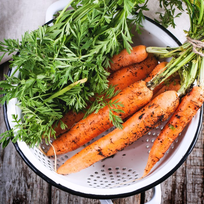 Bunch of fresh carrot with soil in white colander over wooden table. Top view. Square image