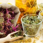 6 Immunity-Boosting Herbs for Fall