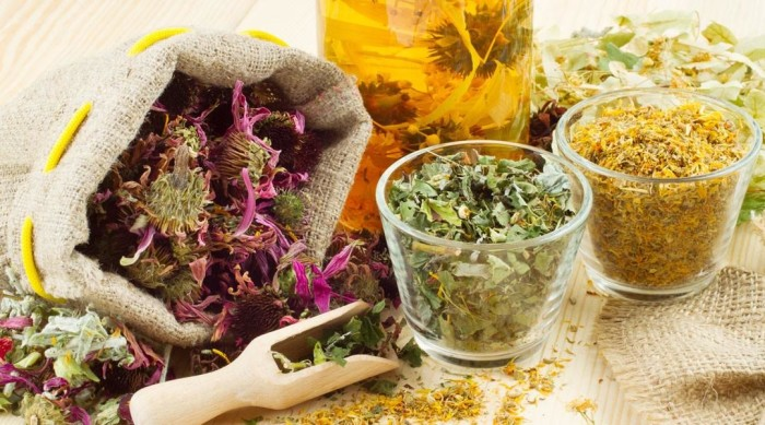 herbs for fall