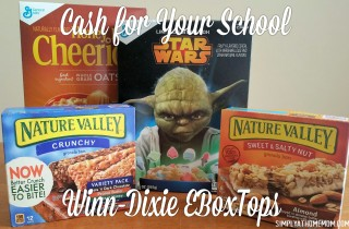 Earn Cash For Your School With Winn-Dixie eBoxTops