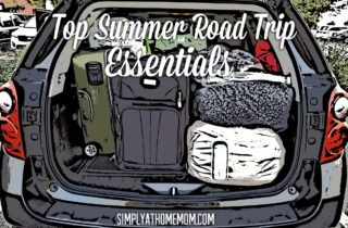 Top Essentials For A Summer Road Trip